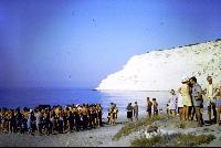 Bay to Bay Swim 1972.jpg